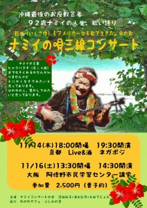 ナミイコンサート2013